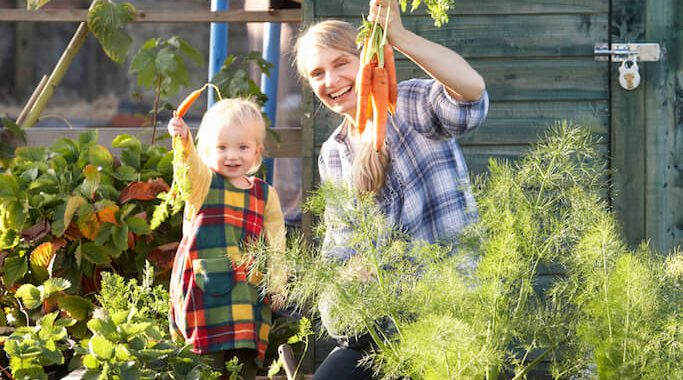 Testurteil Kleingartenversicherung 2016
