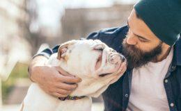 Hundehaftpflichtversicherung Pflicht