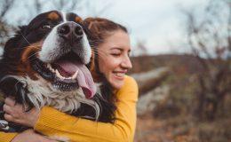 Hundehaftpflicht Test 2019