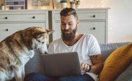 Hundehaftpflichtversicherung kündigen